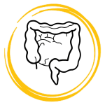 saffron effect on intestine