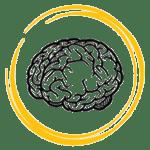 saffron effect on brain