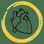 saffron effect on heart