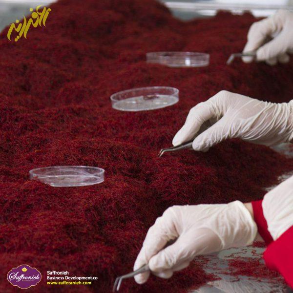فروش زعفران عمده و فله در تهران به قیمت ارزان