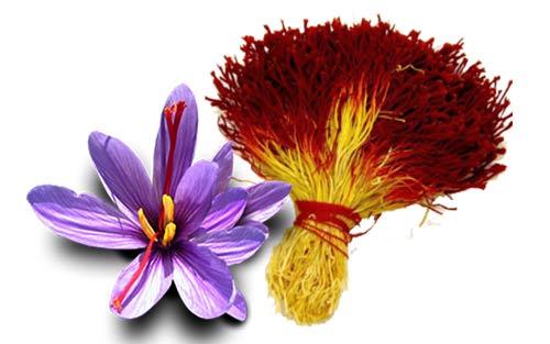 آیا زعفران مضر است؟